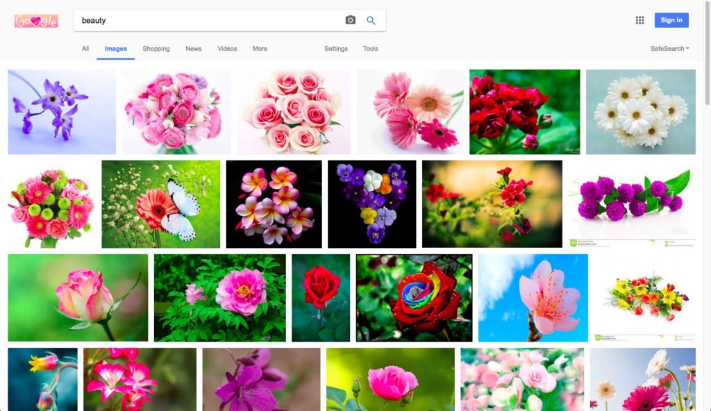 Google Search Flowers