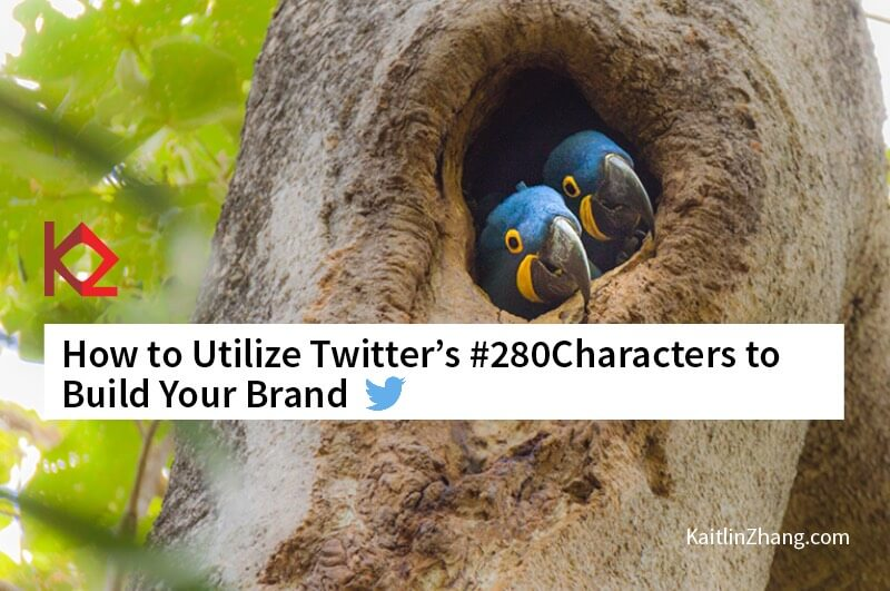 Two Blue Birds How to utilize twitter's 280 characters to build your brand