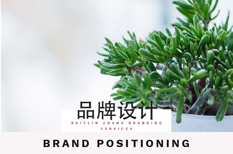 品牌设计 brand positioning 品牌管理 Kaitlin Zhang Branding Service