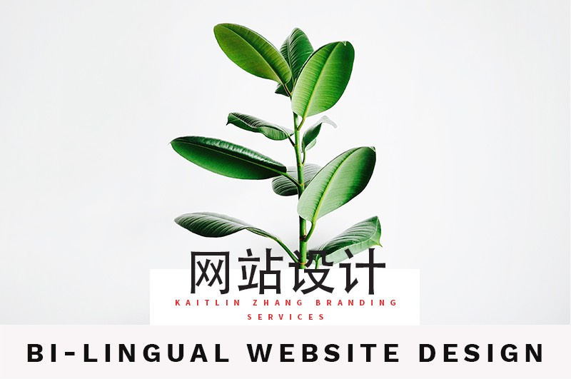 网站设计 Bilingual website design Kaitlin Zhang Branding Services