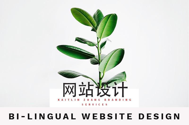 网站设计 Bilingual website design Kaitlin Zhang Branding Services